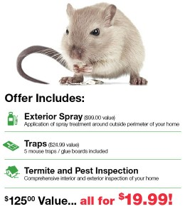Fall Pest Control Offer
