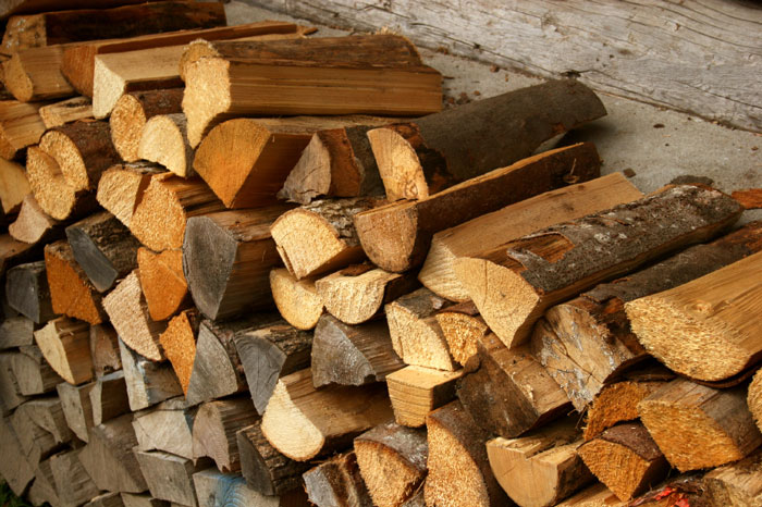 Firewood: Where winter pests hide