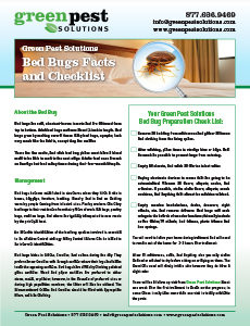 Bed Bugs Facts and Checklist