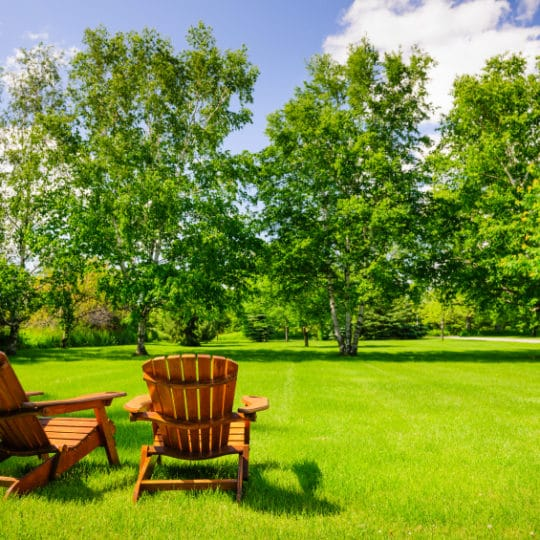 5 Tips to Get Your Home Ready for Summer